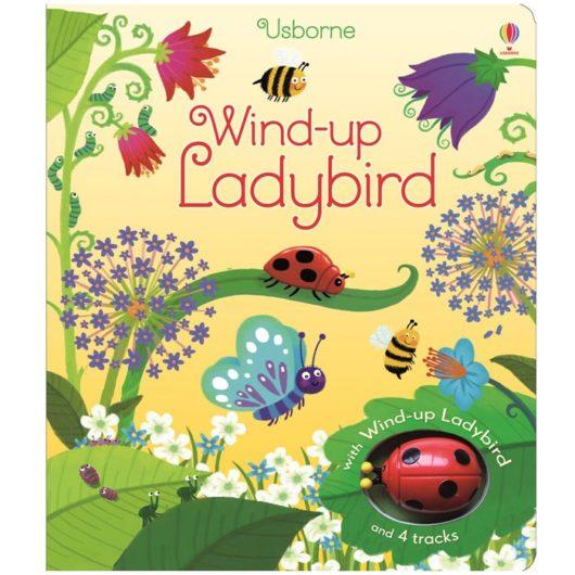 Usborne children's storybook with wind up ladybird