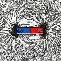 Magnetic fields arrange iron fillings