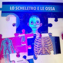 UV glow reveals a skeleton underneath!